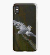 Line of Bird iPhone Case/Skin
