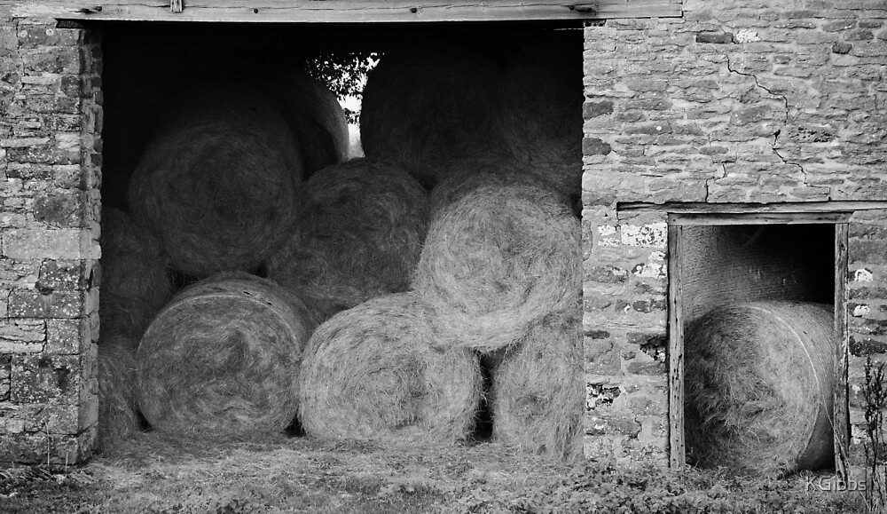 Autumn Barn by KGibbs