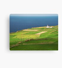 Pastures and lighthouse Canvas Print