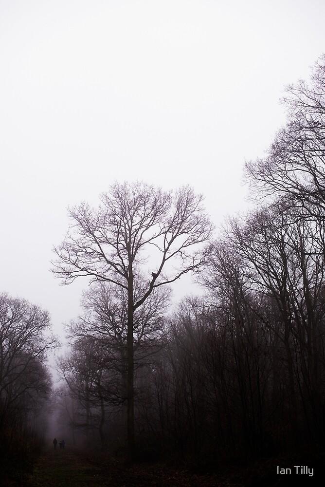 Fog descending by Ian Tilly