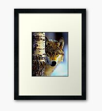 TIMBER WOLF; Vintage Wilderness Print Framed Print