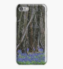 A Woodland Cathedral iPhone Case/Skin