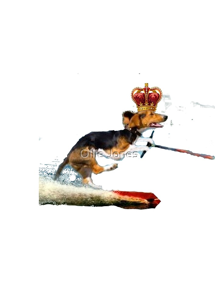 Dog With Crown Water Skiing by Ollie Jones