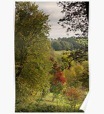 Autumn Surrey` Poster
