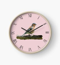 Chaffinch - Roman dial markings, Pink background Clock