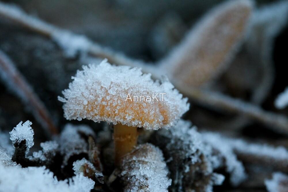 Tiny, icy mushroom by AnnaKT