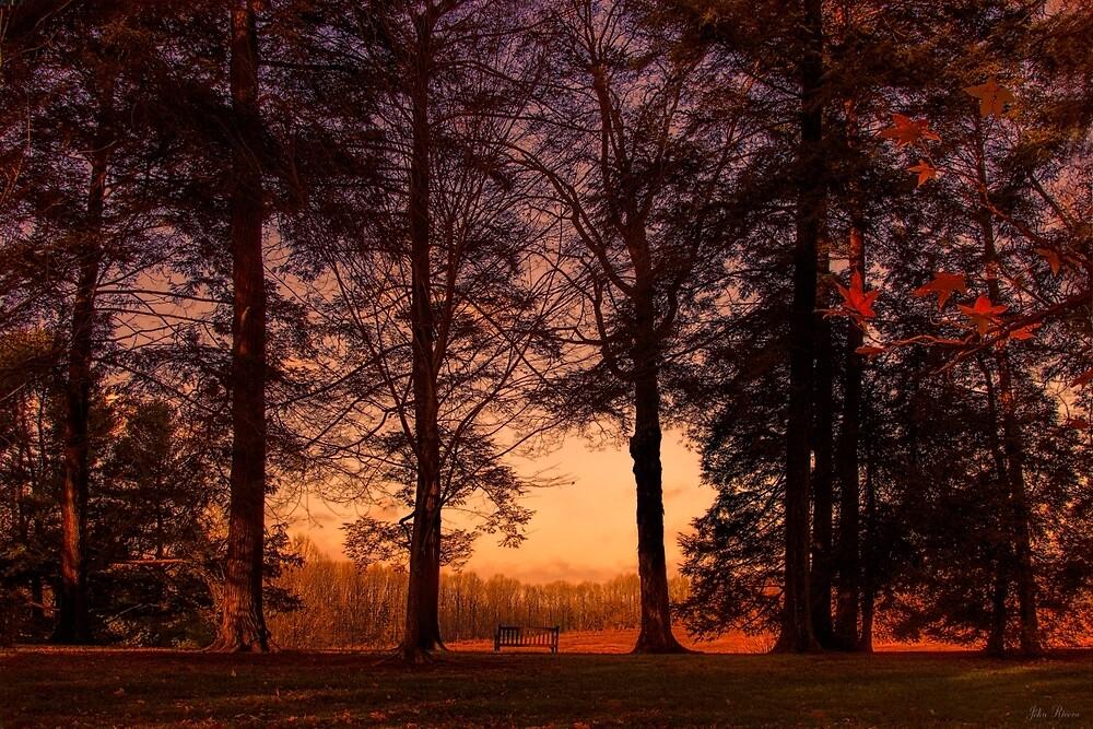 Evening Begins by John Rivera