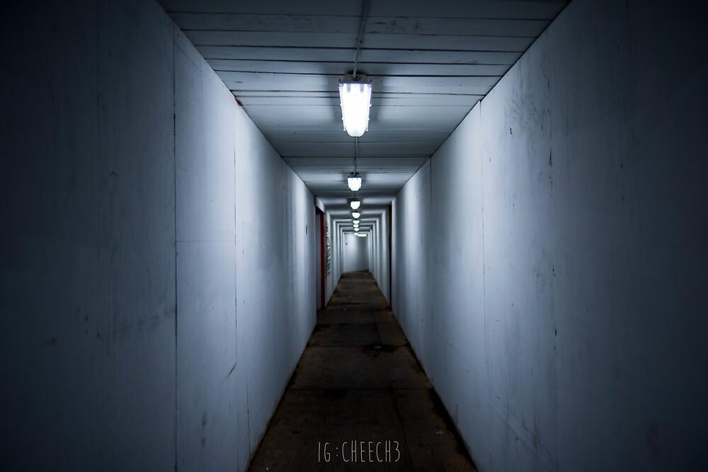 Tunnel by Cheech3