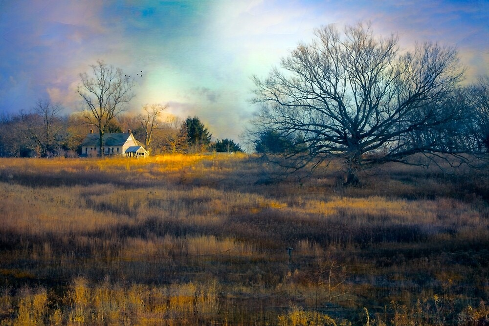 Home on a Hill by John Rivera