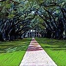 Oak Alley Plantation Louisiana by hilda74