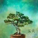 The Inner Spirit of Bonsai by John Rivera