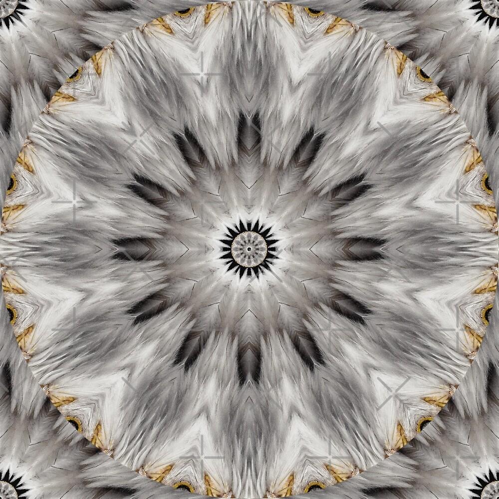 Feather Mandala 7 by tereanahata