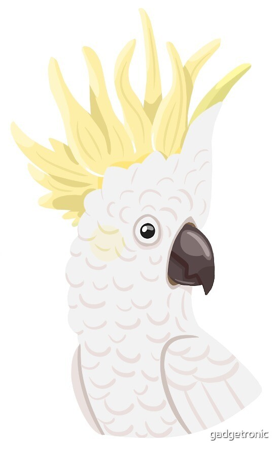 Sulfur-Crested Cockatoo by gadgetronic