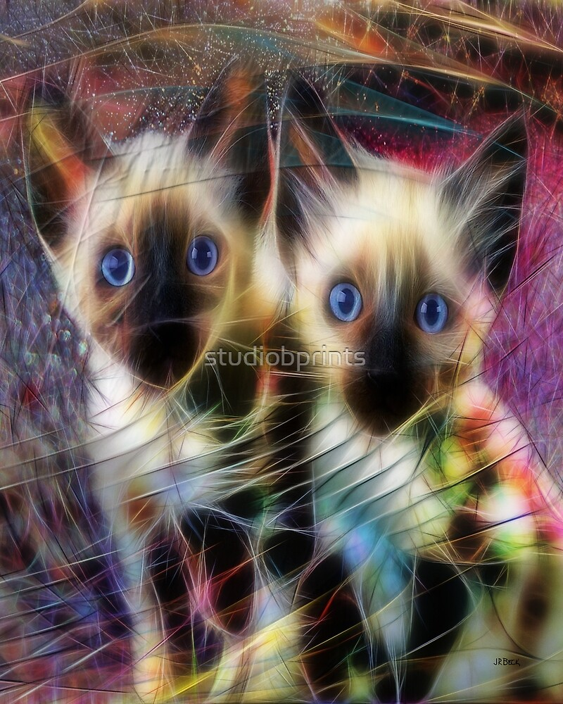 Siamese Cuties - By John Robert Beck by studiobprints