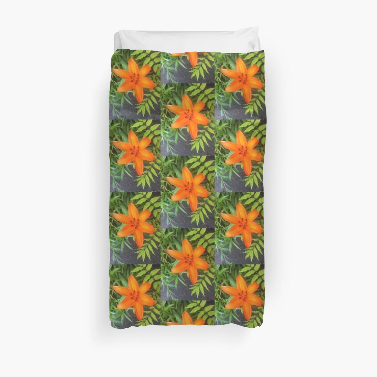 Orange Lily by aquariusrising