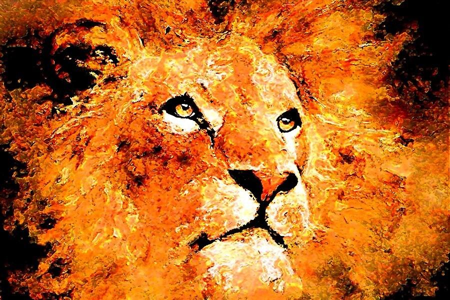 Lion by Phil Gresham