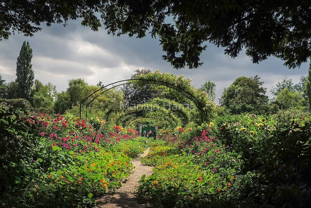 An Afternoon in Claude Monet's Garden by Marilyn Harris