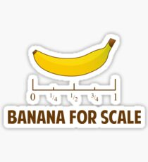 Banana For Scale Sticker