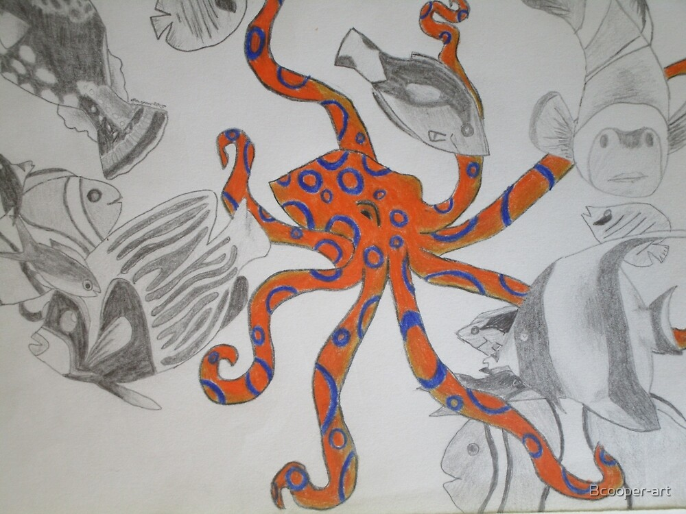 Blue-Ringed Octopus by Bcooper-art
