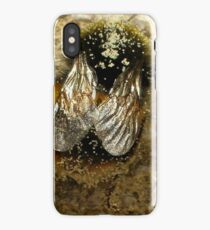 Bumble-Bee Wings iPhone Case/Skin