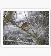 Robin and Winter Scene Sticker