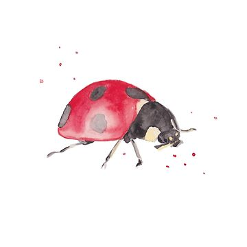 Ladybird Watercolour by BISCUITANDCO