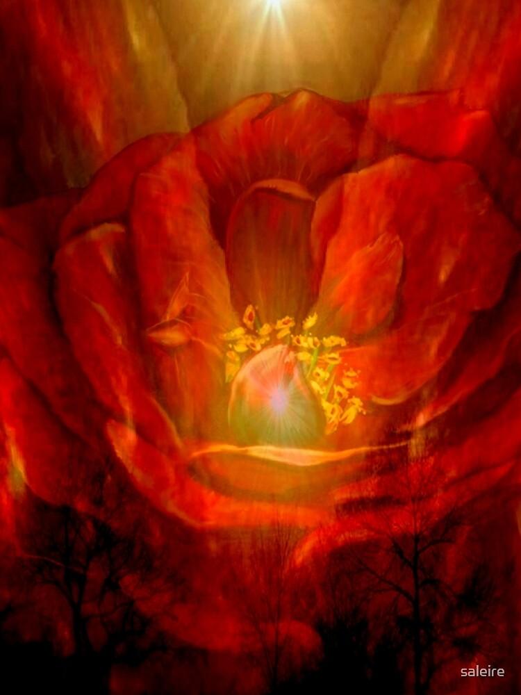 Wings of Love by saleire