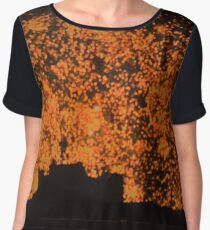 Fireworks Women's Chiffon Top