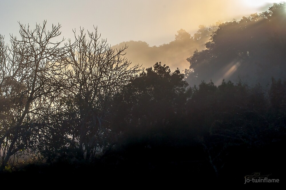Morning light in Portugal by jo-twinflame
