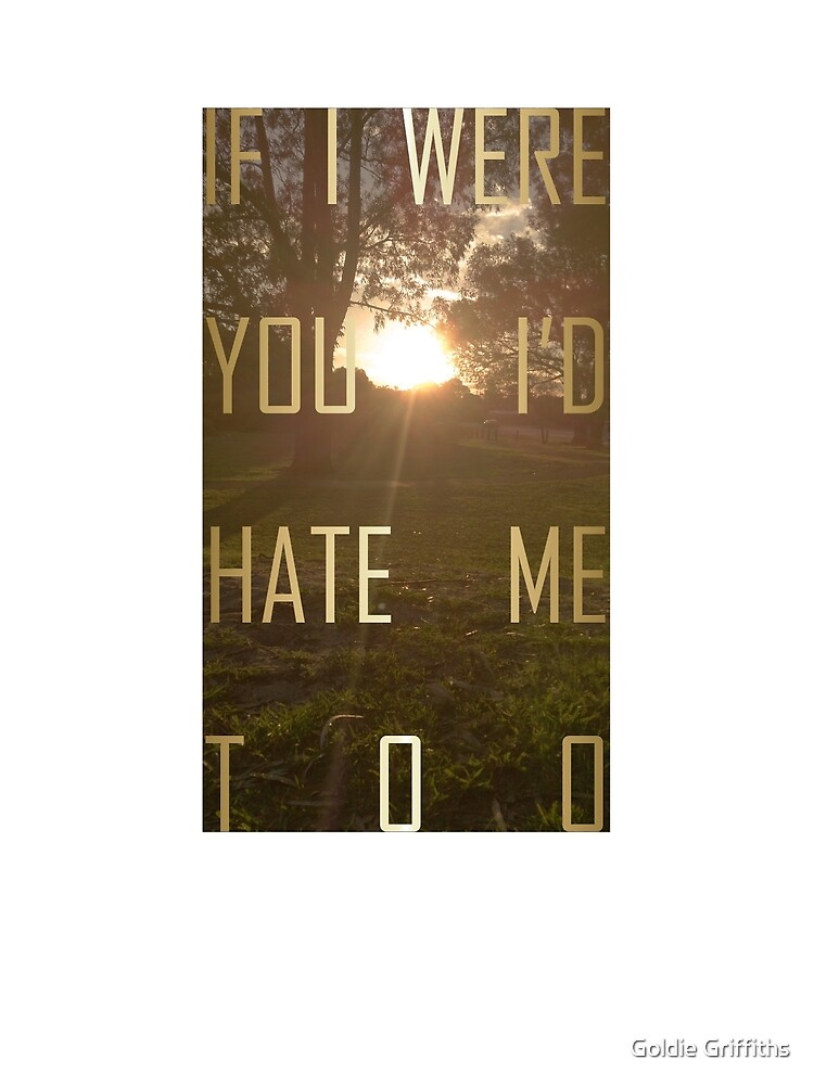 I'd hate me too by Goldie Griffiths