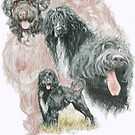 Portuguese Water Dog /Ghost by BarbBarcikKeith