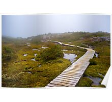 The Overland Track Cradle Mountain. Poster