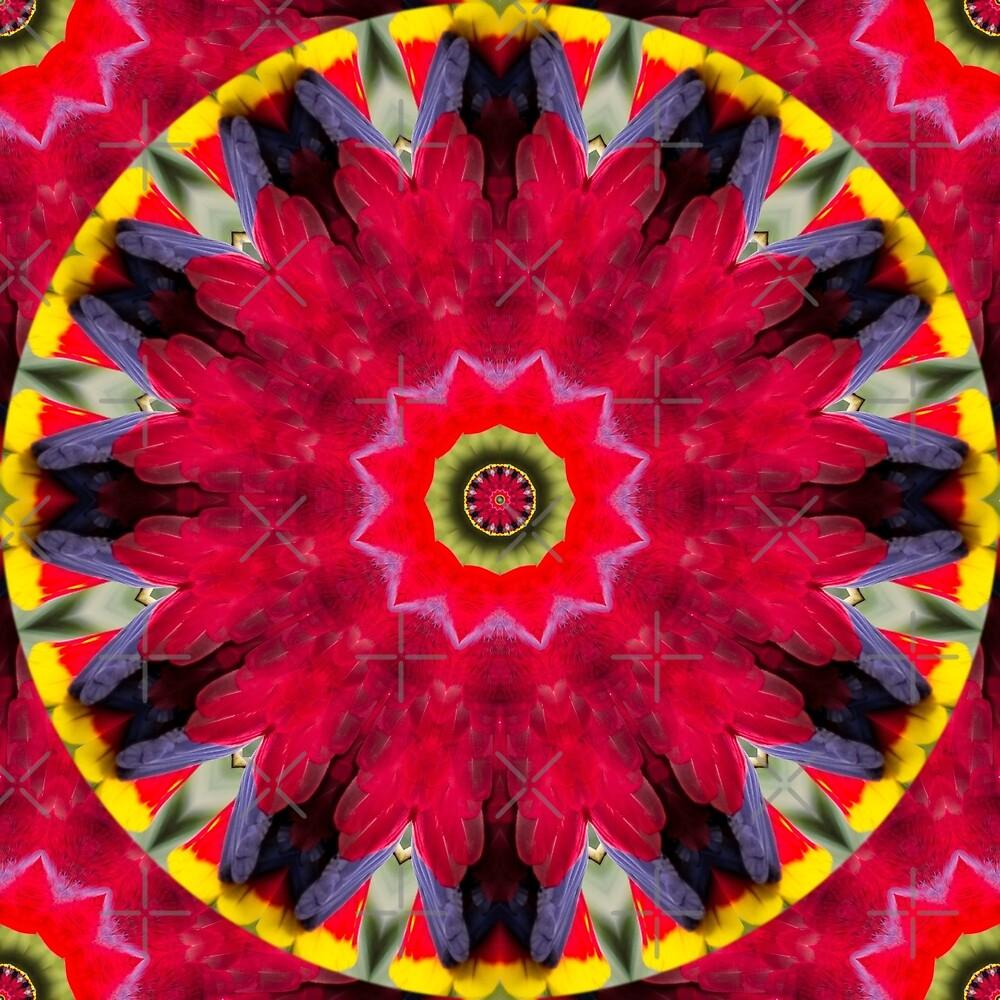 Feather Mandala 9 by tereanahata