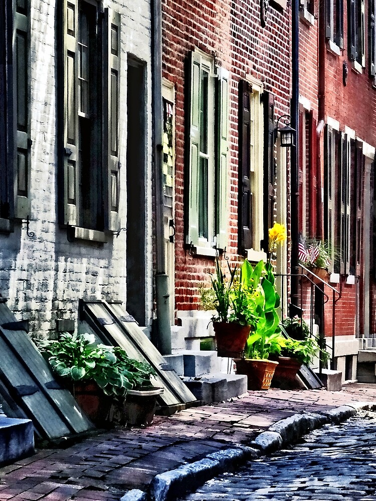 Philadelphia Pa Street With Flower Pots by Susan Savad
