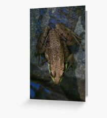 Frogger Greeting Card