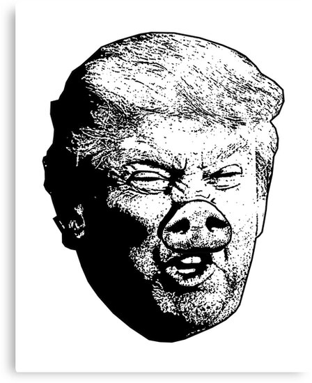 Donald Drumpf - Misogynist by loudmouthtees