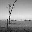 El Rancho - Guaíra, Brazil by Eric Cook