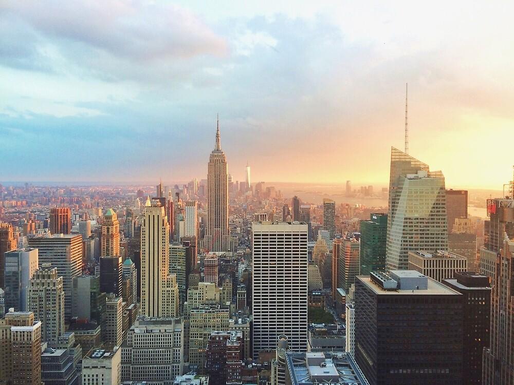 New York City Skyline  by beccainskeep