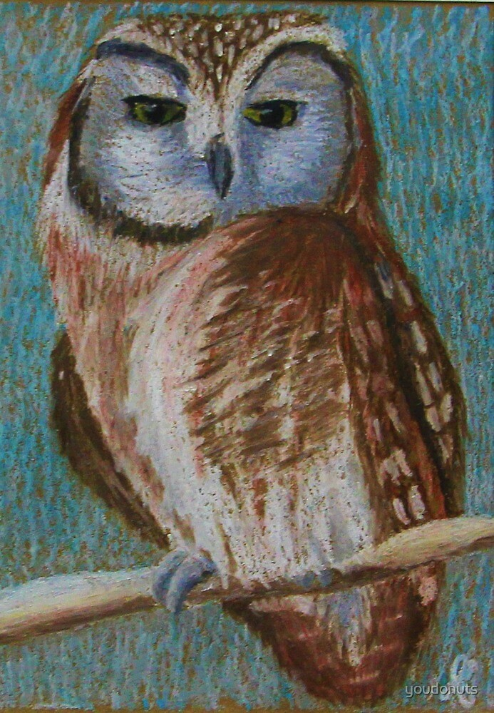 Owl Pastel by youdonuts