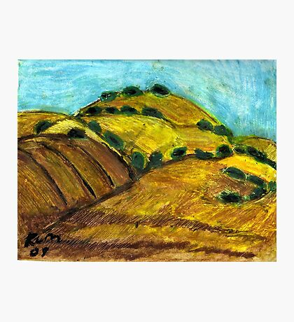 California Hills In Summer(Fields Of Gold) Photographic Print