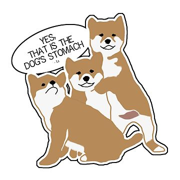 Three Doggos Being Dogs by youstiffbrah