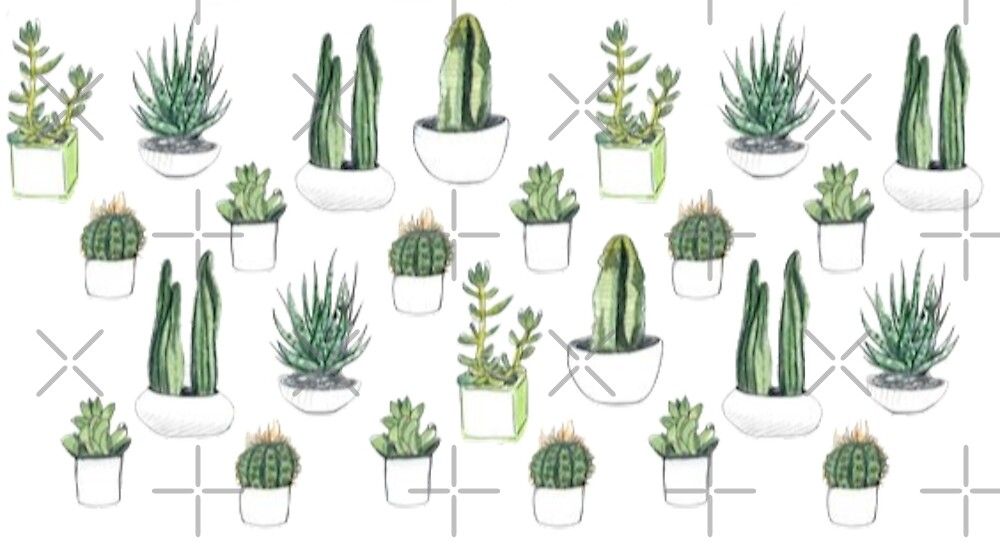 cactus by Gloria Lam