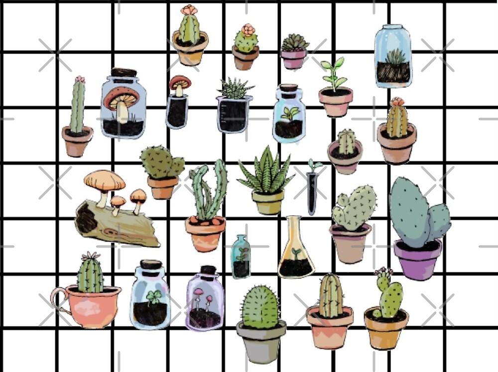succulent grid by Gloria Lam