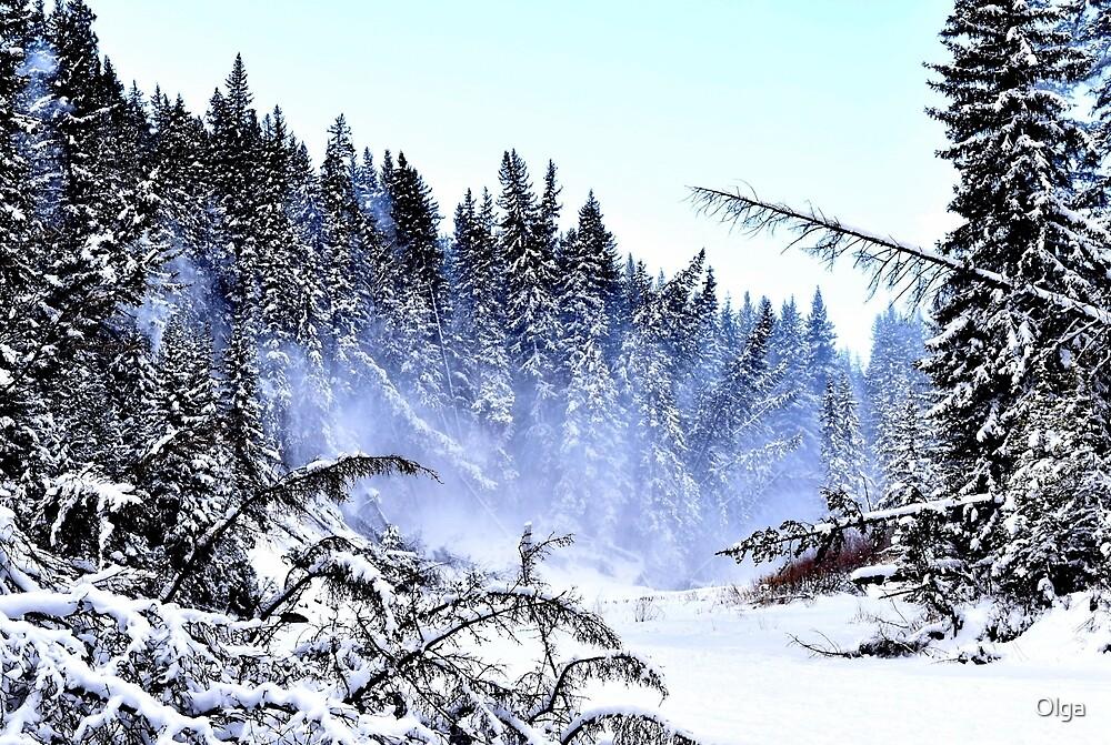 Snow Drift by Olga