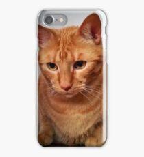 Garrus the Orange iPhone Case/Skin