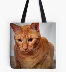 Garrus the Great Tote Bag