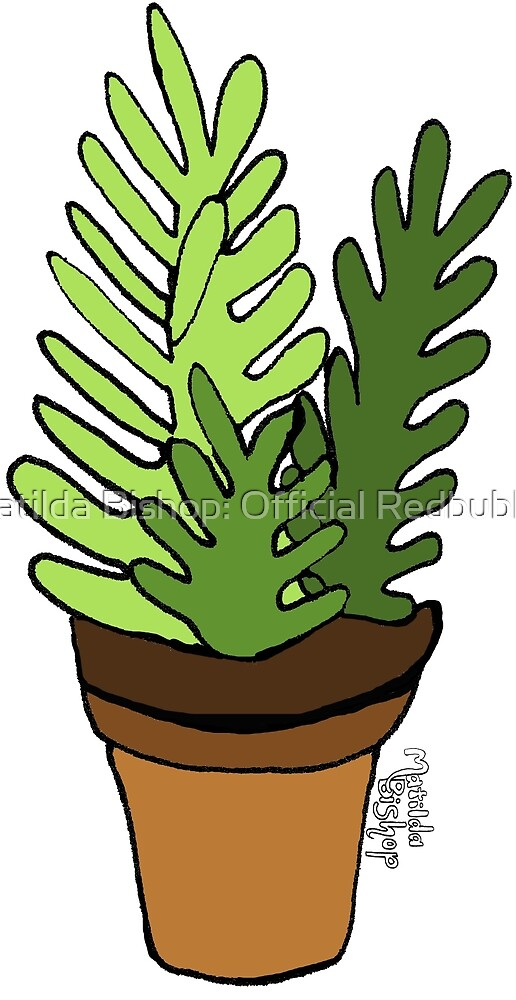 Fern Succulents by Matilda Bishop Art: Official Redbubble