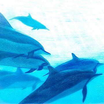 dolphin by Nasir-Nadzir