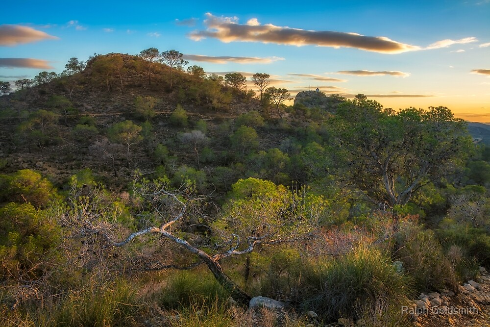 Hill and trees at sunset by Ralph Goldsmith