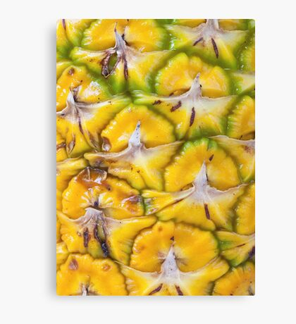 Macro textured background of pineapple Canvas Print